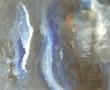 Métamorphose 1 Acrylique 50cm sur 61cm